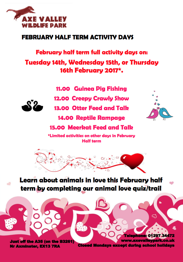 A poster of the half term activities at Axe Valley Wildlife Park in East Devon