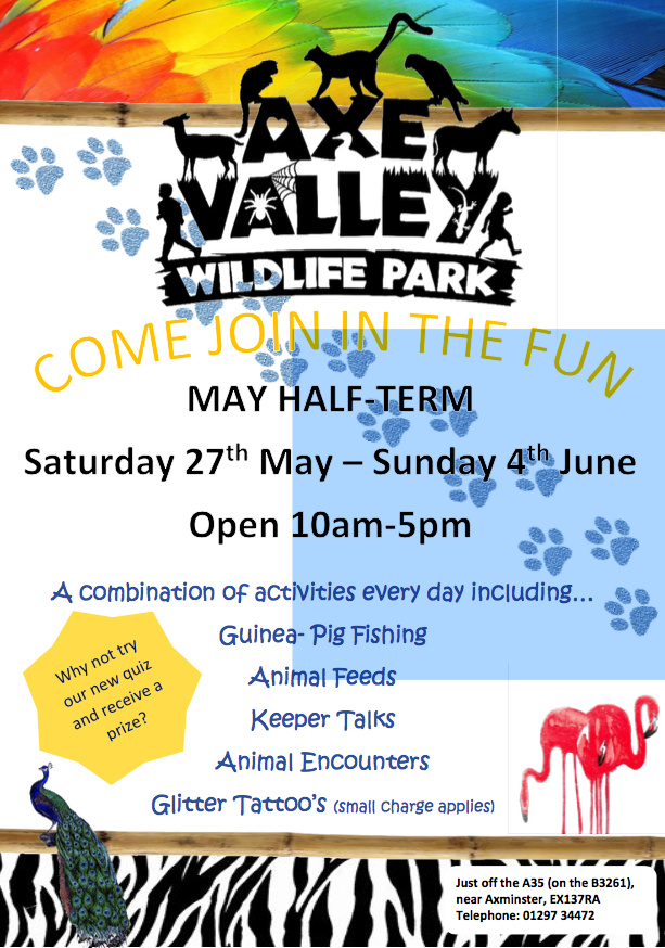 Poster for half term activities at Axe Valley Wildlife Park