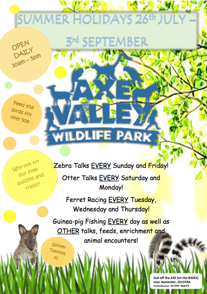 Summer poster of activities at Axe Valley Wildlife Park